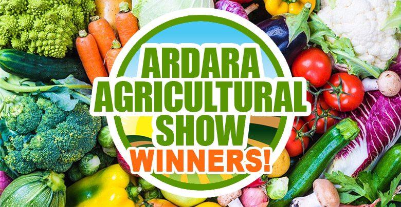 Sun Shines once again on Ardara Show